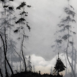 "BROOKS SALZWEDEL - i know he receives plenty of love here & on .com, but his work continues to astound. opening reception for his new show ""modern soil"" at black maria gallery in LA happens june 28."