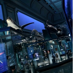The Smithsonian's new Sant Ocean Hall looks definitely worth checking out.