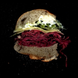 Scanwiches. Scans of sandwiches for education and delight.