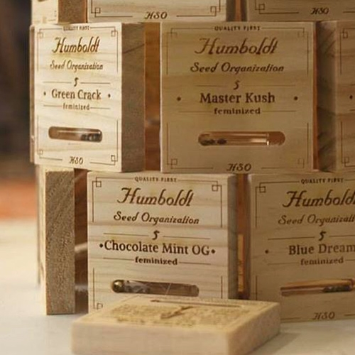 Seeds in glass vials in laser etched wooden boxes. Unique packaging by Humboldt Seed Organisation.