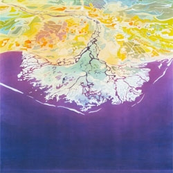 Mary Edna Fraser creates beautiful landscapes with an aerial perspective in batik. Amazing pieces!