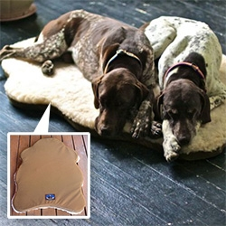 Skookum Dog's Sheepskin Dog Bed with Memory Foam