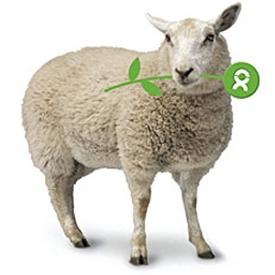 Oxfam - buy a sheep ($45) and other products...  