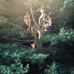 """In the video for their latest single """"Gobbledigook"""", Sigur Rós teamed up with amazing photographer Ryan McGinley."""