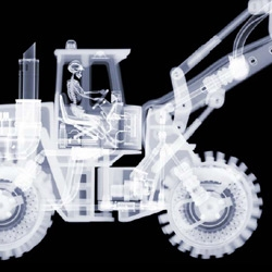 X-RAY, the amazing photography of Nick Veasy