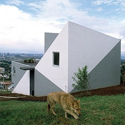 House on the slope by mexican architect Derek  Dellekamp. I like how the grey painting on the walls make the walls look like folded planes.