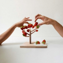 Stephanie Marin have in cooperation with the Michelin star chef Mauro Colagreco designed a series of wooden trees to be used to server fruit (among other things).