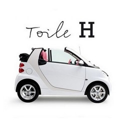 To celebrate the 10th Anniversary of the the Fortwo model, Smart Car collaborated with Hermès.