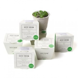 These eco-herb pots are even better than buzzy seeds that needed repotting (which was a pain once the roots were so entwined, here you simply place the whole thing in the ground!