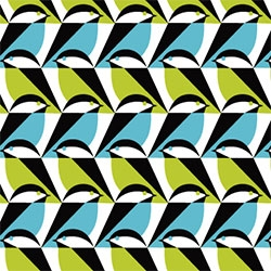 Eleanor Grosch's Mixteca collection of 12 bird inspired fabric patterns for Cloud 9!