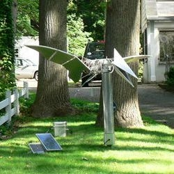 Squirrel-powered kinetic sculptures run on peanuts and birdseed. Creations by Bill McHugh have great names too, like Swirl-A-Squirrel and Squi-Rel-A-Tor.