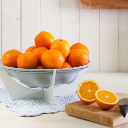 Stretchy Bowl is a bowl that expands as you add fruit. The stretchy fabric is breathable keeping your fruit fresher longer. Bowl can be stored completely flat.