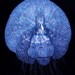 A collection of chandeliers inspired by sea urchins, jellyfish, and coral reefs.  Beautiful!