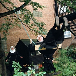Shannon Taggart's Nuns photo series: guaranteed to make you smile.