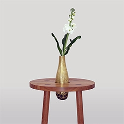 Wood & Bronze Side Table by Mexican Industrial Designer Raul Pardo
