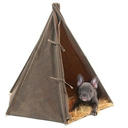 Go! Pet Design Field Tent with faux fur floor - Adorable pictures of this fun tent for dogs...