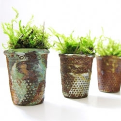 Tiny vintage thumbnail planters filled with moss.