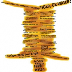 There are only 1300 tigers left in India. A fresh perspective on the problem