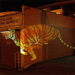 more new stuff on wooster, wild animals projected from your car, so they run alongside.  kinda sweet?