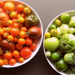 Cute post at Heavy Petal on how to save tomato seeds (for planting your own!)