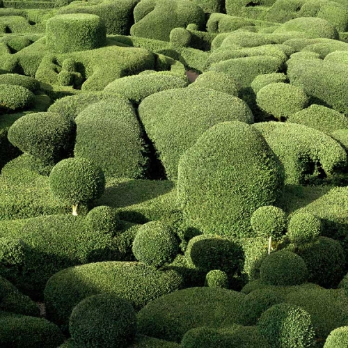 Philippe Jarrigeon's photographic series of the maze of topiary at the Château de Marqueyssac for pin-up magazine.