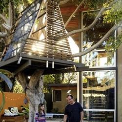 Great tree house in the venice beach Zubieta-Barhar house