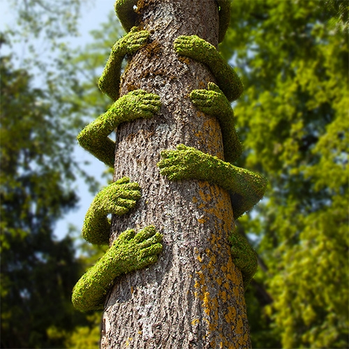 "Christophe Guinet aka Mr. Plant's ""Tree Hug"" is made from molds of the arms of local residents. Installation for Exhibition in Annecy / FRANCE from July 6 to September 15, 2019 for Annecy Paysages and l'Arteppes."