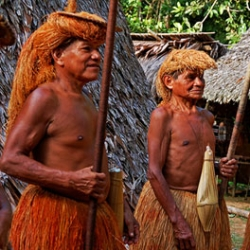 There has been quite an uproar over the images snapped of the uncontacted tribe in Peru.  Here is an update on whats going to be done.