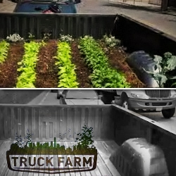 Truck-Farm (winner of Nau's annual Grant for Change) is a documentary / experimental take on urban agriculture.