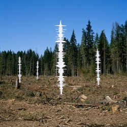 Tviga Vasilyeva puts the sound of the forest back where the trees have been cut down.