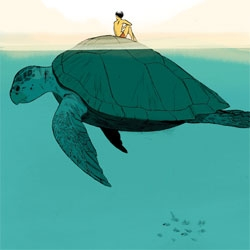 Ooooh beautiful Loggerhead illustration by Jillian Tamaki