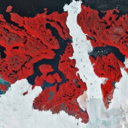UNESCO is featuring an incredible exhibit of satellite images of the ravages of climate change at the UN Conference on Climate Change (COP16). Shown above: a satellite image of glacial recession in the Ilulissat Icefjord.