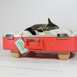 Upcycled suitcases make adorable pet beds. From Etsy seller AtomicAttic.