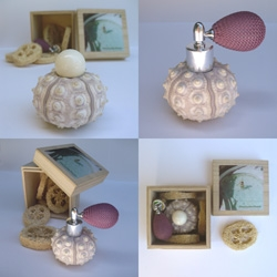 """Honeymoon Fragrance by Stephanie Simek - """"Inside this sea urchin shell is an organic perfume made from grapefruit and basil essential oils.  This bottle is refillable, so you can use it over and over."""" And padded with loofa!"""