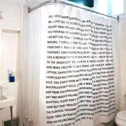 The Thing Quarterly #16: Dave Eggers... Published on a shower curtain, with the idea that one would read it while showering, this issue is a monologue told to Dave Eggers by his shower curtain.