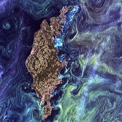 """Van Gogh from space."" That's how Rebecca Roth at NASA Goddard describes this stunning image, which looks like Starry Night. But these are not stars. It's right here, on planet Earth."