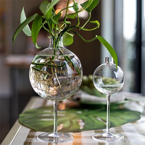 Hester & Cook made these spherical wine glass vases by Etú Home look great with hydro-rooting plants!