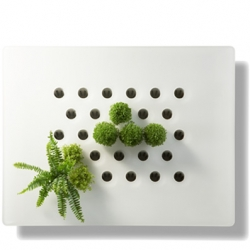 Vegetal Screen DIVA by Vertilignes is a cool solution to organize a vertical garden at home.