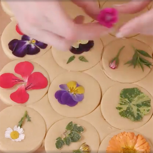 Vogue has a video recipe with Lori A. Stern to make her lovely Flower Pressed Shortbread Cookies from #63251.
