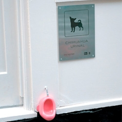Why yes, that IS a chihuahua urinal. Brilliantly cheeky campaign by M&C Saatchi for ITV's WAGS Boutique Reality Show.
