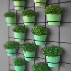 Insitu Living Wall Planters ~ grids in varying sizes ready for you to add pots of your favorite plants for an easy living wall in/outdoors!