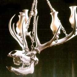 Love the new piece from Adam Wallacavage : an elk skull chandelier .