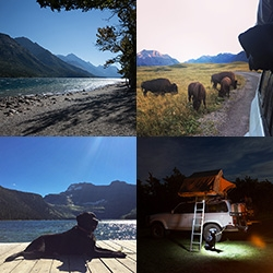 Heading into Alberta, Canada - first stop: Waterton Lakes National Park! A peek at the stunning views, lake hikes, bison paddock (you can drive around in it!), and our tree nestled camp site.