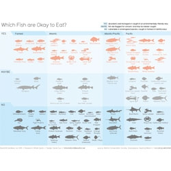 Which Fish are Okay to Eat? Information is Beautiful's David McCandless & Derek Guo sum it up in this beautiful infographic.