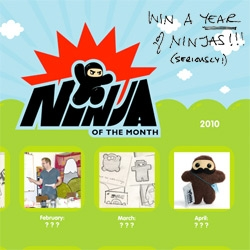 Holiday Feature! and chance to win a year of ninjas! Shawnimals is launching the NINJA OF THE MONTH program ~ you can get a new ninja every month... also take a peek into the shawnimals studio!