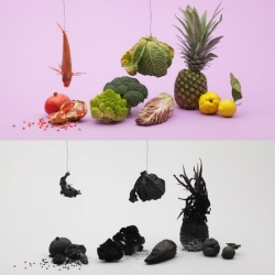 Still life by Kensuke Koike - Carbonization of fruit and vegetable.