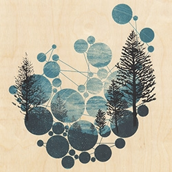 New Antlers 'No Such Cold Void' print looks stunning on wood!