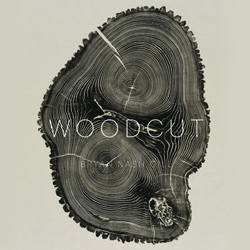 Woodcut by Bryan Nash Gill - a book of beautiful, detailed prints of woodcuts cross sections through trees telling their unique stories through the details.