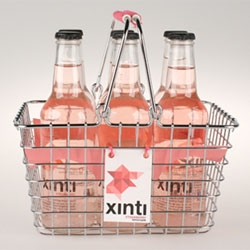 Cute packaging for Xinti lemonade by Breanna Radermacher.