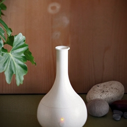 "Shopping for a desk humidifier / aroma diffuser. Loving the ""Wacca"" by Yuen'to, and the vapor rings produced via ultrasonic vaporizing and aroma diffusing systems are just fun to watch."